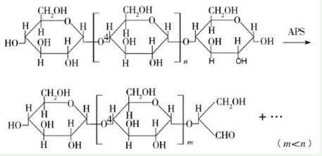 氨基酸结构通式图片